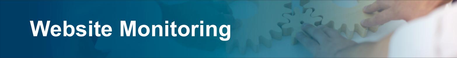 Website Monitoring-1