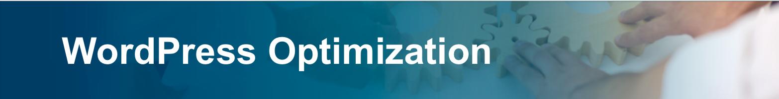 WordPress Optimization-1